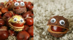 7 conker craft ideas for autumn